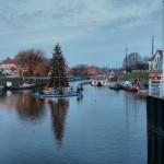 Weihnachtsmarkt in Carolinensiel - Schiwmmender Baum im Hafen